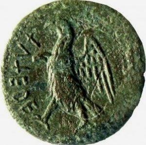 Etruscan coin